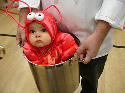 baby lobster HAPPY HALLOWEEN!