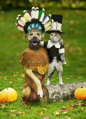 cat dog HAPPY HALLOWEEN!