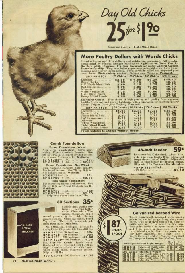 image 1 Vintage Catalogue